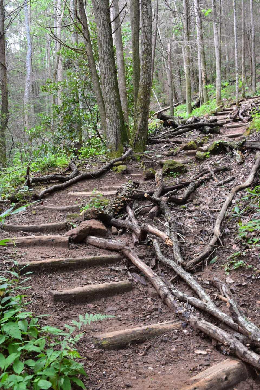 Bear-Hair-Gap-Trail