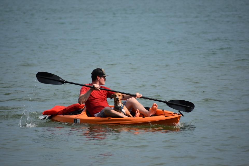 Kayaking-Dog