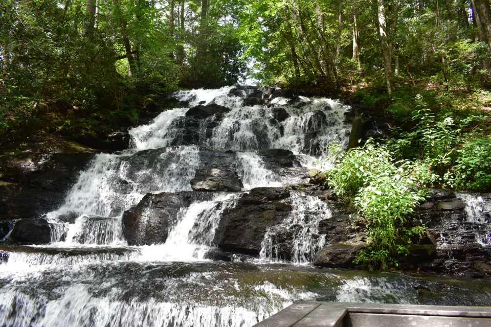 Vogel-Waterfall
