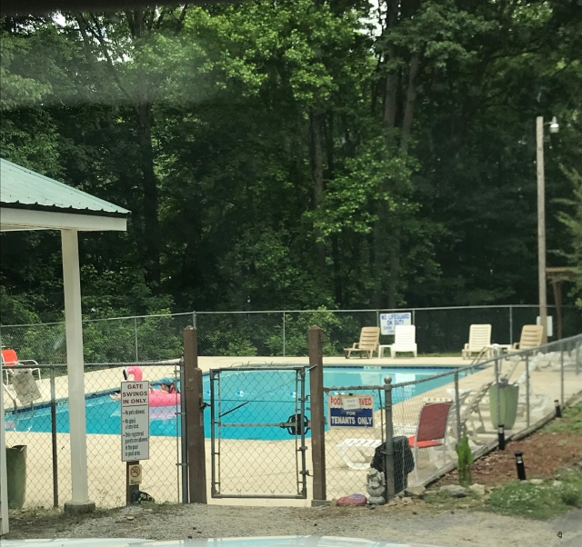 Pine Ridge Campground Pool