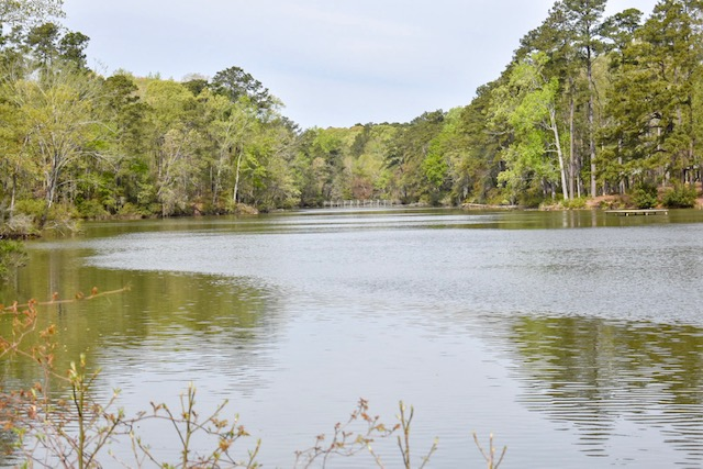 Lake-at-santee