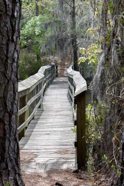 Limestone-trail-bridge