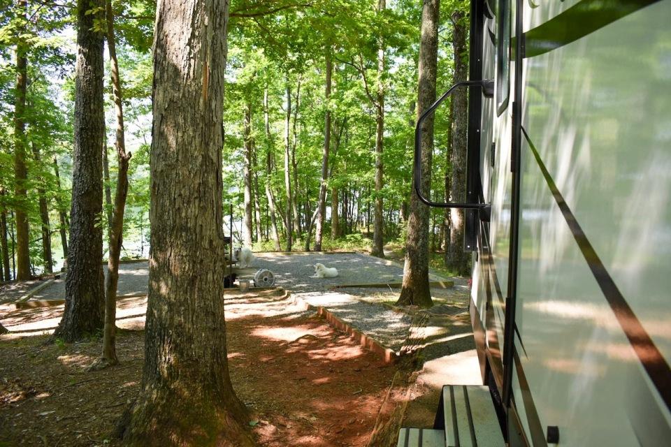 site-15-shady-grove