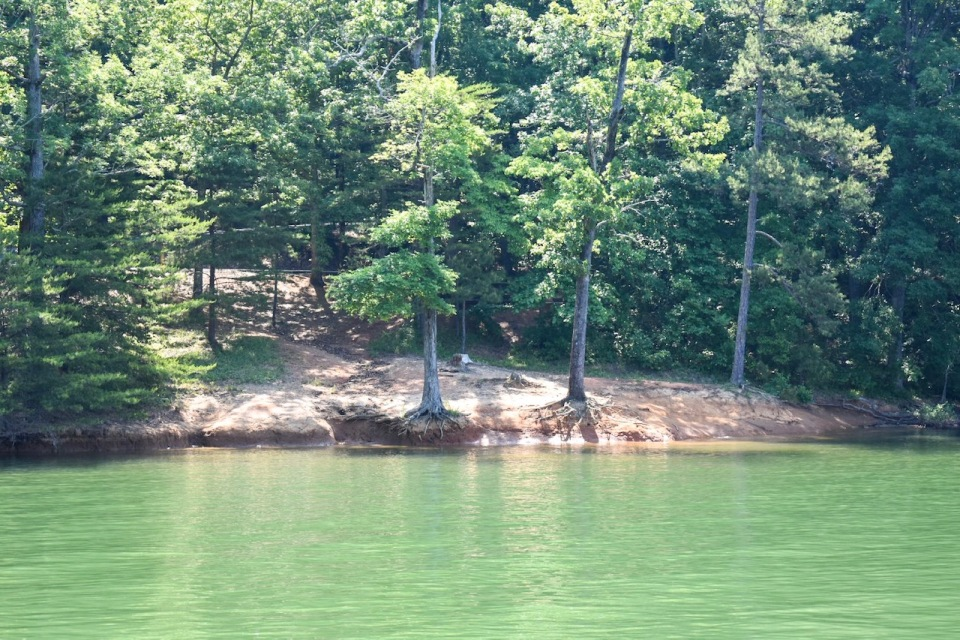 site-26-water-access-shady-grove