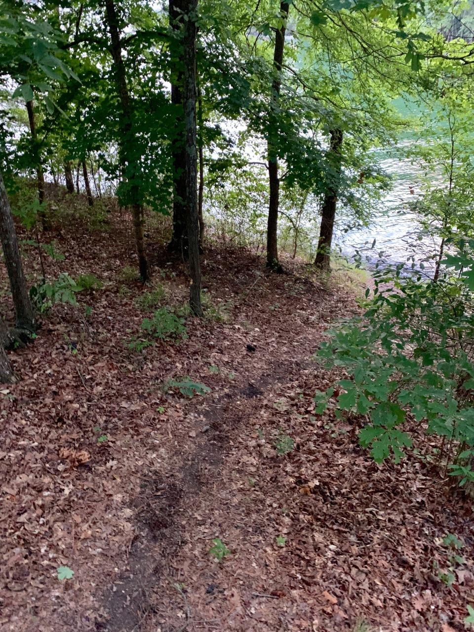 path-to-water-109-mckinney