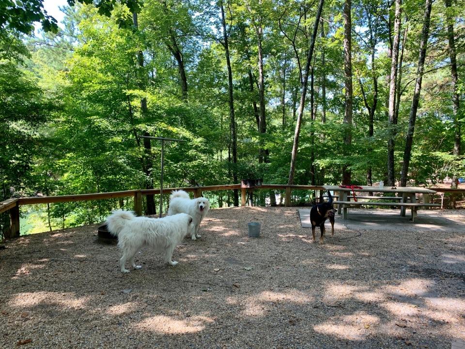 mckinney-campground-site-55