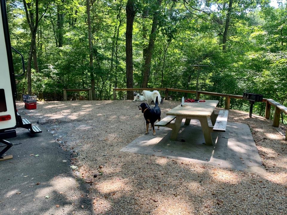 site-55-mckinney-campground