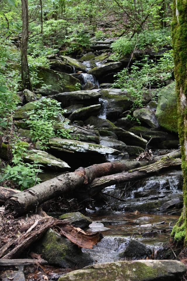 big-rock-trail-creek