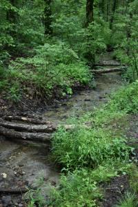 creek-fort-mountain