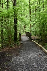 fort-mountain-lake-trail