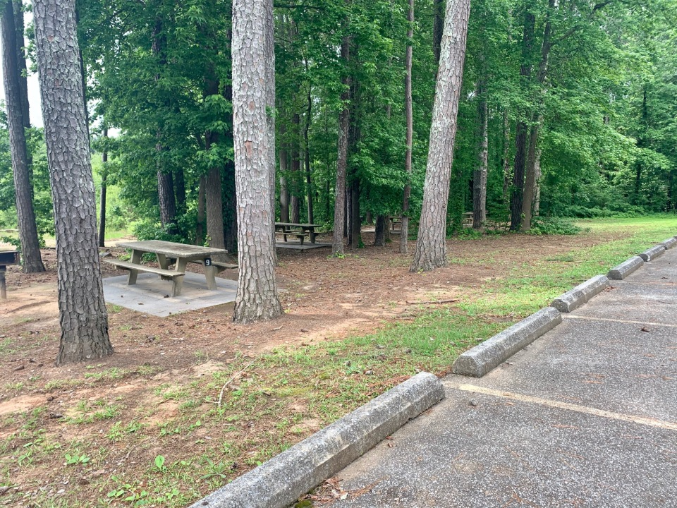 day-use-picnic-tables-sweetwater-campground