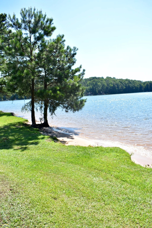 site-44-water-access-bald-ridge-campground
