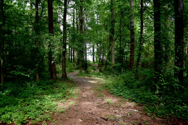 trail-135-sweetwater-campground